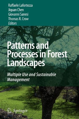 9789048120246: Patterns and Processes in Forest Landscapes