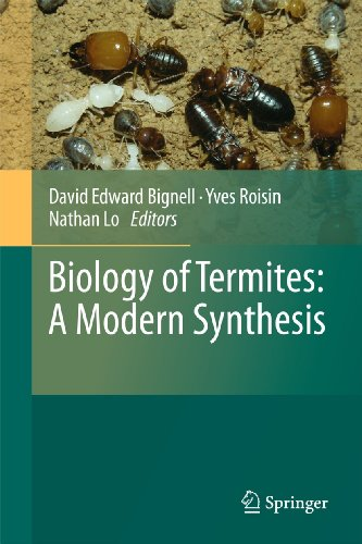 Biology of Termites: A Modern Synthesis (Hardback)