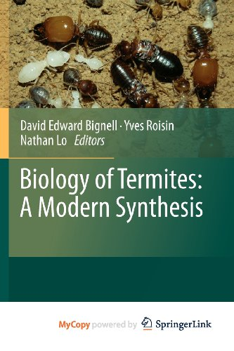 9789048139781: Biology of Termites: a Modern Synthesis