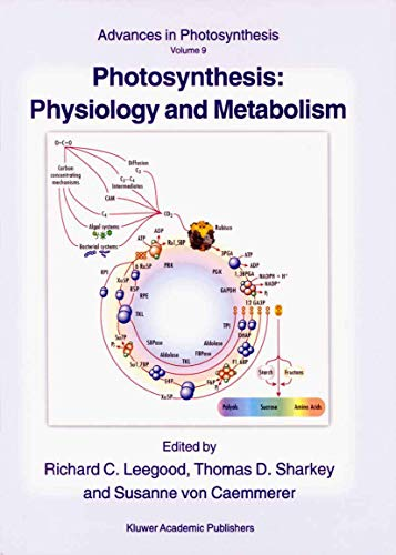 9789048153862: Photosynthesis: Physiology and Metabolism (Advances in Photosynthesis and Respiration)