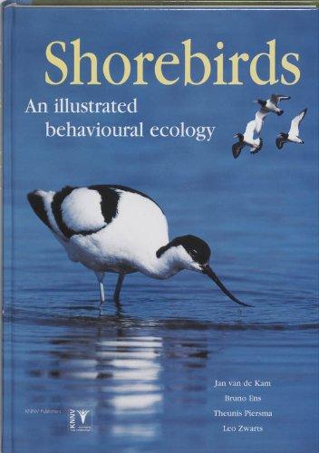 9789050111928: Shorebirds: An Illustrated Behavioural Ecology