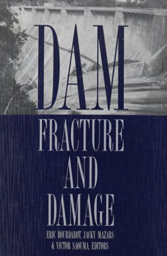 Dam Fracture and Damage: Proceedings of the International Workshop on Dam Fracture and Damage/...