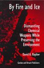 9789056995607: By Fire and Ice: Dismantling Chemical Weapons while Preserving the Environment (Science & Global Security Monograph Series, V. 3)