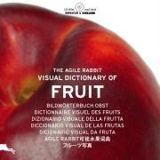 9789057680472: The agile Rabbit visual dictionary of Fruit (1Cédérom)