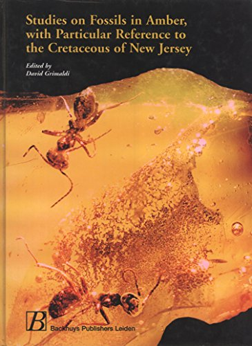 9789057820601: Studies on Fossils in Amber, with Particular Reference to the Cretaceous of New Jersey