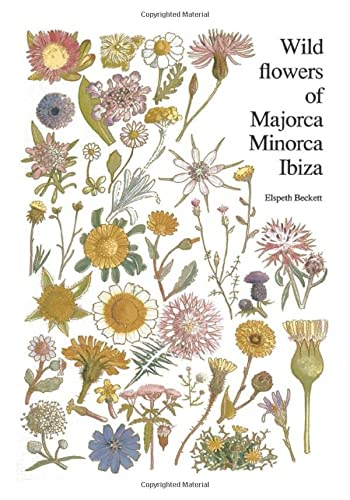 9789061916345: Wild flowers of Majorca Minorca and Ibiza: With Keys to the Flora of the Balearic Islands