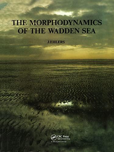 9789061916796: Morphodynamics Wadden Sea