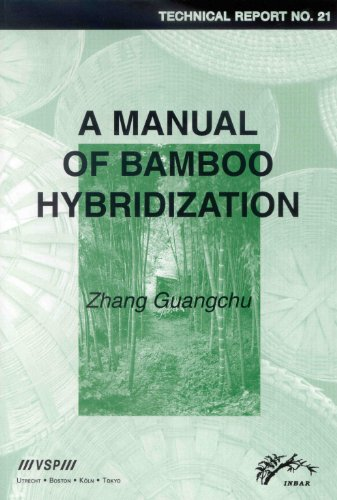 A Manual of Bamboo Hybridization: Inbar Technical Report No. 21 (Paperback): Guangchu Zhang