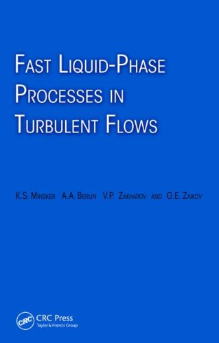 9789067644099: Fast Liquid-Phase Processes in Turbulent Flows