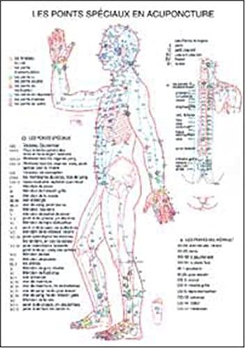 9789070281397: Points Speciaux en Acupuncture