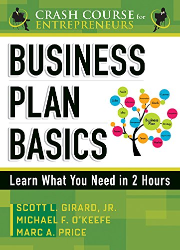 9789077256428: Business Plan Basics: Learn What You Need in 2 Hours (Crash Course for Entrepreneurs)
