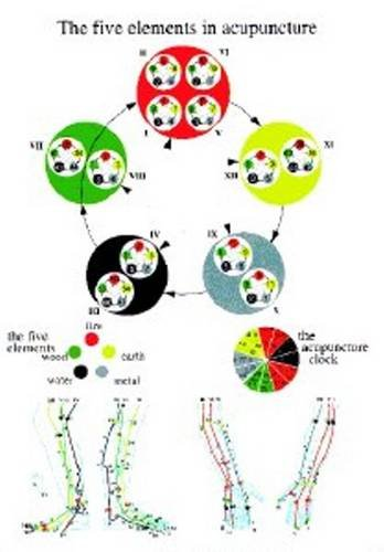 Five Elements in Acupuncture - A4: Baarle, Jan
