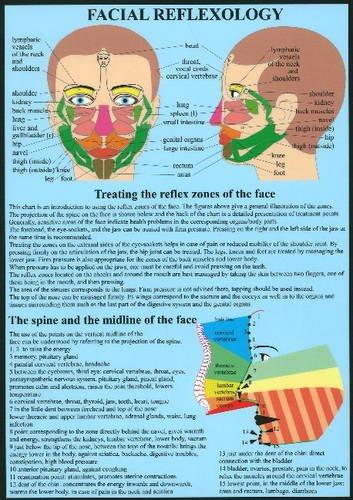 Facial Reflexology: Baarle, Jan van