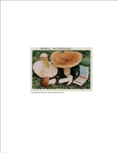 9789081058421: Jason Fulford: The Mushroom Collector
