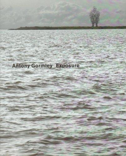 9789081598019: Antony Gormley - Exposure