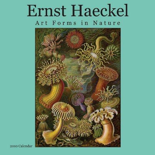 9789085183600: Ernst Haeckel Calendar: Art Forms in Nature