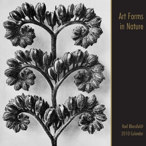 9789085187547: Art Forms in Nature Calendar