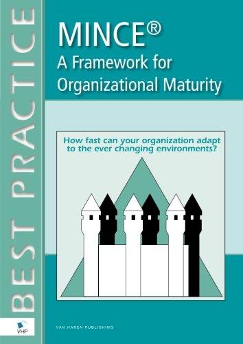 9789087530471: MINCE® A Framework for Organizational Maturity (English version) (Best Practice Series)