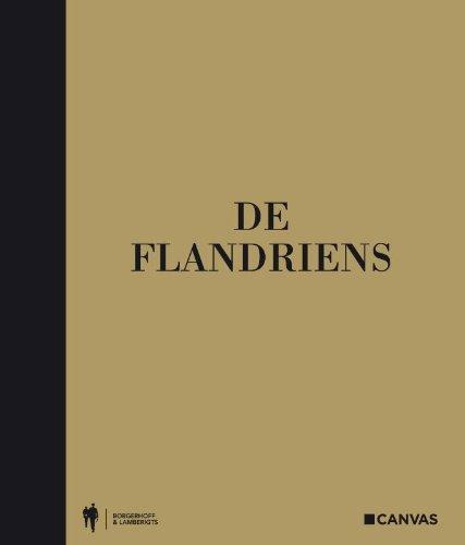 9789089311238: De Flandriens