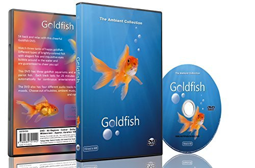 9789089701558: Baby and Kids DVD - Goldfish Aquarium shot in HD with long Scenes