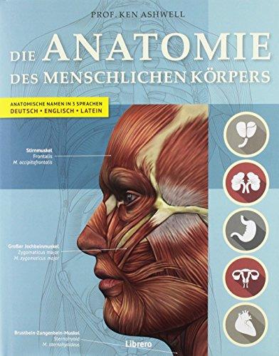handbuch der menschlichen anatomie - ZVAB