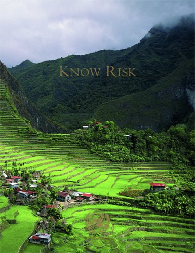 9789211320244: Know Risk