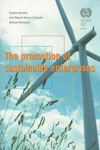 The Promotion of Sustainable Enterprises: Buckley, Graeme, Salazar-Xirinachs, José Manuel, ...