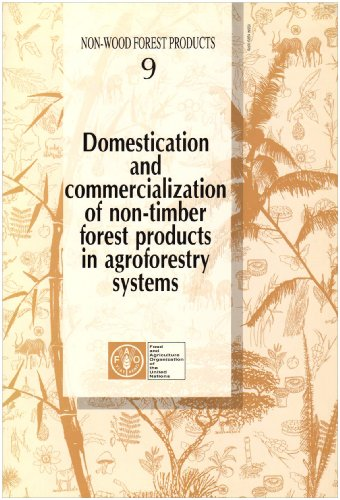 9789251039359: Domestication and Commercialization of Non-Timber Forest Products in Agroforestry Systems (Non-Wood Forest Products)