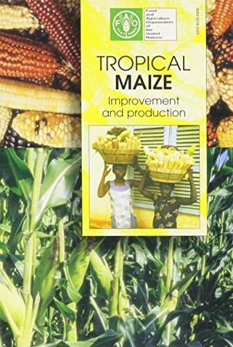 Tropical Maize: Improvement and Production (FAO Plant: Food and Agriculture