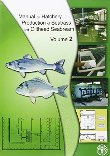 9789251053041: Manual on hatchery production of seabass and gilthead seabream. Vol. 2