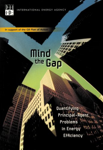 9789264038844: Mind the Gap: Quantifying Principal-Agent Problems in Energy Efficiency (Short-term economic indicators)