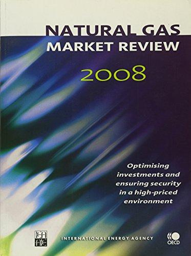 Natural Gas Market Review 2008: Optimising Investments: Bernan