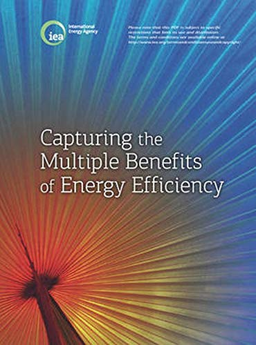 Multiple Benefits of Energy Efficiency: A Guide to Quantifying the Value Added (International ...