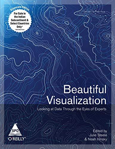 9789350230510: BEAUTIFUL VISUALIZATION