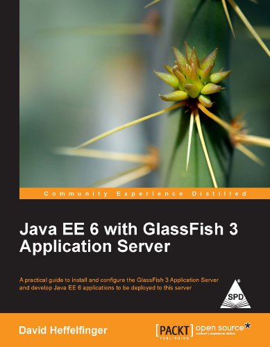 9789350232187: Java Ee 6 With Glassfish 3 Application Server