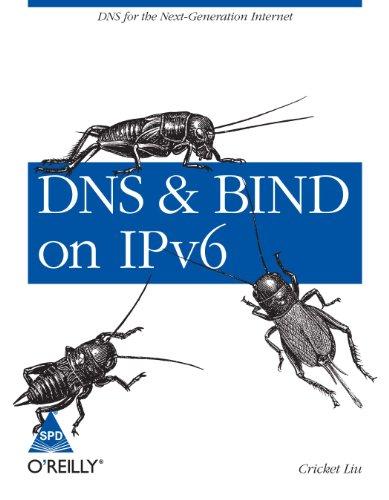 9789350234112: DNS & BIND ON IPV6