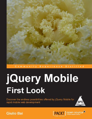 9789350234884: jQuery Mobile First Look