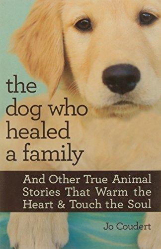 9789351062516: The Dog Who Healed a Family (PB)