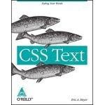 9789351102663: CSS Text