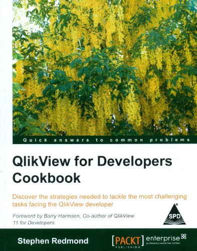 9789351102724: QlikView for Developers Cookbook