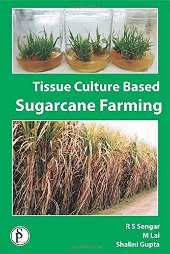 9789380012353: Tissue Culture Based Sugarcane Farming