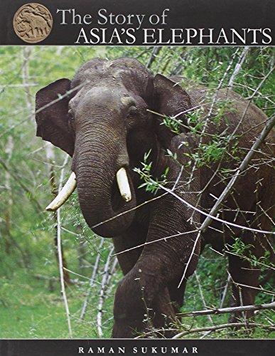 The Story of Asia s Elephants (Hardback): Raman Sukumar