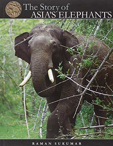 9789380581101: The Story of Asia's Elephants