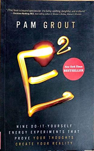 9789381398456: E2 : Nine Do-It-Yourself Energy