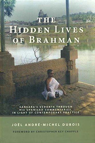 9789381406366: The Hidden Lives of Brahman (Sankara's Vedanta]