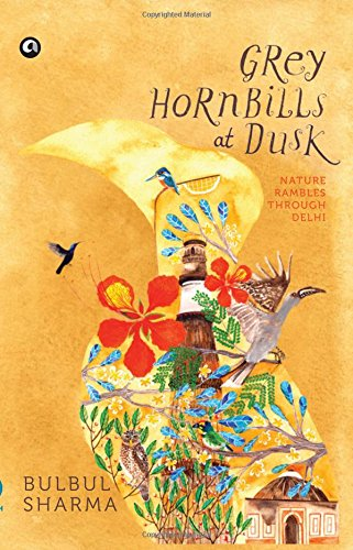 Grey Hornbills at Dusk : Nature Rambles: Bulbul Sharma