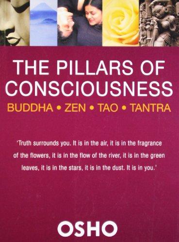 9789382616184: The Pillars of Consciousness