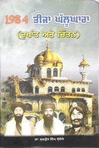 9789383116027: 1984 Teeja Ghalughara (Punjabi)