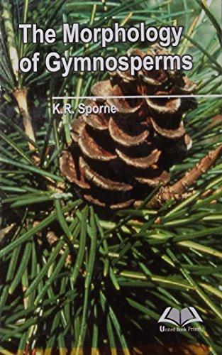 9789383692309: Morphology of Gymnosperms