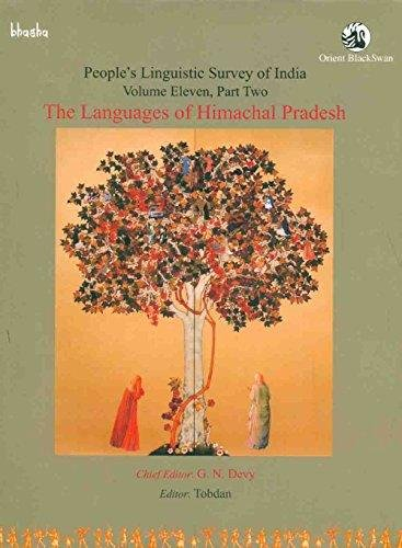 Peoples Linguistic Survey of India: Volume 11: G. N. Devy